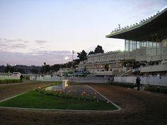 Bay Meadows Park: San Mateo, California.