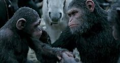 'War For The Planet Of The Apes' Fathers Day Teaser