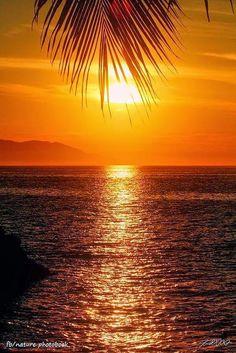 In The Frawn ✯ Puerto Vallarta, Mexico Sunset One of my favorite places!✯ Puerto Vallarta, Mexico Sunset One of my favorite places! Amazing Sunsets, Amazing Nature, It's Amazing, Beautiful Sunrise, Beautiful Beaches, Beautiful Scenery, Puerto Vallarta, Vallarta Mexico, Beautiful World