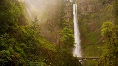 """Be there in 6 weeks! """"@travelchannel: Today's #DailyEscape is from Multnomah Falls in Columbia River Gorge, Oregon.  pic.twitter.com/LVWlmLLqWM"""""""