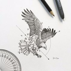 Геометрия в рисунках | Минутное ...
