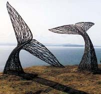 Whale tales sculptures. Peter Busby.  This with a ground cover of blue flowers