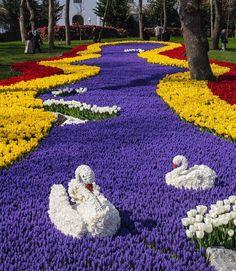 Make colorful garden! Topiary Garden, Garden Art, Beautiful Flowers Garden, Pretty Flowers, Amazing Gardens, Beautiful Gardens, Beautiful Beautiful, Beautiful Pictures, Miracle Garden