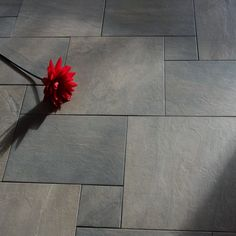 A dark grey coloured multi-sized combination pack containing natural stone effect porcelain floor tiles in three separate sizes, the pack contains: 2pcs of 50x50cm, 2pcs of 50x33cm and 2pcs of 16.5x16.5cm, all together the pack works out to 0.88m5