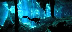 """Cenote Dos Ojas, near Tulum Mexico. Dos Ojos is located 48km/30miles south of Playa del Carmen. It got the name """"Dos Ojos"""" because it has two entrances or two eyes."""