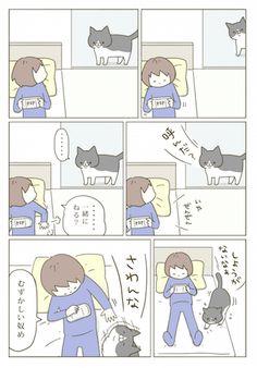 漫画 Animals And Pets, Cute Animals, Cat Comics, Funny Cute, Neko, Kittens, Kawaii, Manga, Humor
