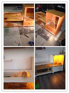 Cavia hok maken Pet Furniture, Little Ones, House, Animals, Ideas, Animales, Home, Animaux, Animal