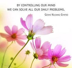 By controlling our mind we can solve our daily problems. Geshe Kelsang Gyatso