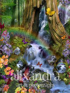 Woodland Forest Fairyland