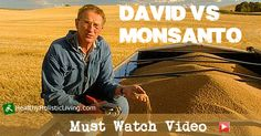 One lone farmer said NO to GMOs and to Monsanto and this is his fight watch this amazing documentary on what is really happening to our farmers and food supply - David vs Monsanto