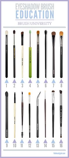 Eye shadow brush basics, brush university, eyeshadow brush, makeup brush how too's, makeup brush basics, crease brush, eyeliner brushes
