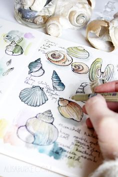Not loving the seashells, but would like to do similar little images of... different fish species or something, with bits of info scrawled in the spaces