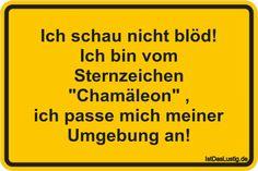 """Ich schau nicht blöd! Ich bin vom Sternzeichen """"Chamäleon"""" , ich passe mich meiner Umgebung an! ... gefunden auf https://www.istdaslustig.de/spruch/172/pi #lustig #sprüche #fun #spass"""