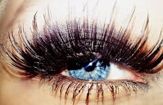 Long eyelashes are so pretty, this may be a little much for me though