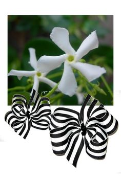 Star Jasmine Ribbon Bows  http://www.fashionribbonwear.com/jasmine-ribbon-bows.html#