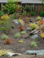 Puget Sound Rain Gardens Goal: Rain Gardens by 2016 Washington State University, Rain Garden, Goal, Gardens, Yard, Water, Plants, Gripe Water, Patio