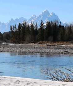 rivermusic:  Bring the Peace The Grand Teton and Snake River, November 7, 2015 gif by rivermusic