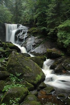Triberg Waterfall -- above Triberg (Black Forest, Germany). Beautiful World, Beautiful Places, Black Forest Germany, Beautiful Waterfalls, Germany Travel, Nature Pictures, Amazing Nature, Land Scape, Nature Photography
