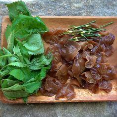 Mushroom Salad, Mushroom Soup, Mushroom Recipes, Wild Mushrooms, Stuffed Mushrooms, Soup Recipes, Vegan Recipes, Mushroom Hunting, Thing 1
