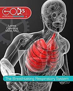 Breathtaking Respiratory System Gods Wondrous Machine Lainna Callentine 9780890518625 Amazon
