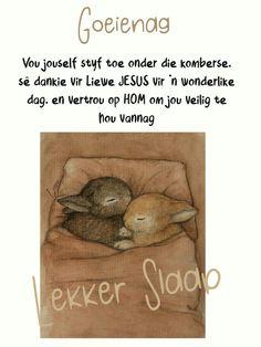 Goeie Nag, Good Night Wishes, Afrikaans, Qoutes, Good Night Blessings, Quotations, Quotes, Afrikaans Language, Quote