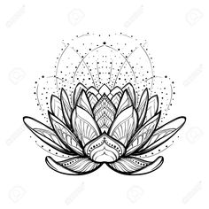 Lotus Flower. Intricate Stylized Linear Drawing Isolated On White.. Royalty Free Cliparts, Vectors, And Stock Illustration. Image 71668466.