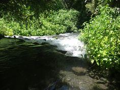Río de los amiales