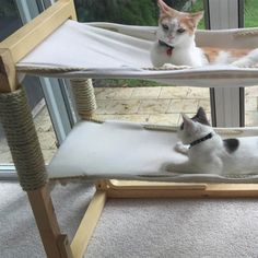 Stylish home decor isn't just for people. Why not make your favorite feline friend some DIY cat furniture he or she will love? #CatFurniture