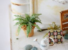 Dollhouse miniature plants Summer Ferns by CheilysMiniature