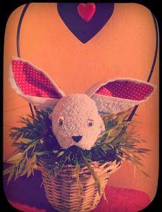sweet rabbit  https://www.facebook.com/fattoriadegliasciugotti