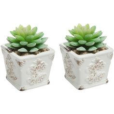 Set of 2 Mini White Shabby Chic Rustic French Country Style Ceramic... ($13) ❤ liked on Polyvore featuring home, outdoors, outdoor decor, plants, fillers, fillers - plants, decor, white ceramic planter, garden planters and ceramic pots