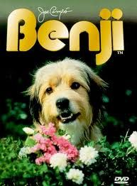 roztomilý voříšek Benji