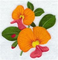Machine Embroidery Designs at Embroidery Library! Free Machine Embroidery Designs, Embroidery Applique, Phad Painting, Yellow Orchid, Australian Flowers, Flower Designs, Quilts, Dish Towels, Quilting Ideas