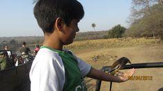 My Son Jigyas feeding beautiful wild tree pie bird