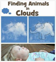 Wolkendieren zoeken-Ga naar buiten!