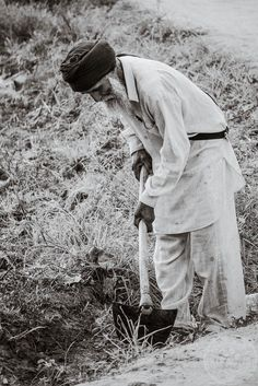 A sikh man working the fields in Punjab, India