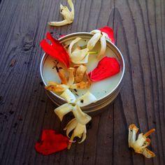 Hair Repair Organic Pomade 🌿 rosemary, cedarwood, carrot seed, rosehip, sea buckthorn. raw shea butter + beeswax + coconut oil.