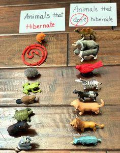 Animals in Winter Preschool Theme - Preschool Activities Nook