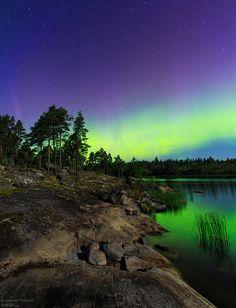 ✯ Aurora over Karelia, northern shore of Lake Ladoga
