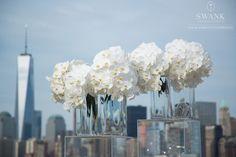 New York City: Ellis Island - Design Dawgs