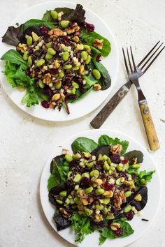 Wild Rice Edamame Walnut and Apple Salad with Dried Cranberries from Parsley In My Teeth