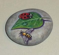 Bugs - Painted rock