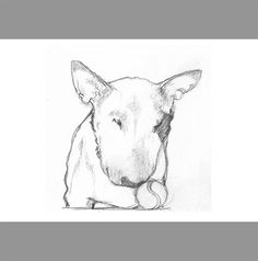 Tennis Ball Bull Terrier Line Drawing  Print to by TheTerriersClub