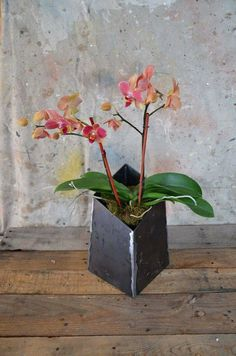 Modern and industrial styles merge beautifully in this unique steel planter. Made from 1/8 inch steel with natural steel finish, this is built to last a lifetime. Finish will gain a beautiful patina over time depending on environments. Measures 12t 7w 7d Flower not included