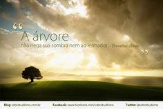 """""""A Árvore não nega sua sombra nem ao lenhador."""" Provérbio Hindu - Veja mais sobre Espiritualidade & Autoconhecimento em: http://sobrebudismo.com.br/"""
