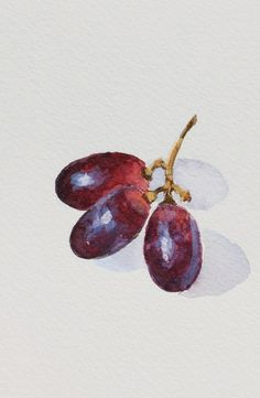 Miniature Painting, Red Grapes Fruit Still Life, Watercolor on Paper, 3.5 x 5 in. by Heather McCaw. $30.00, via Etsy.