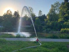 Über 60.000 Liter frisches Wasser wurden Donnerstagabend von den Kameraden der Freiwilligen Feuerwehr in Puchheim in die Puchheimer Teiche gepumpt. […] Der Beitrag FF Puchheim: Frisches Wasser für Puchheimer Fische erschien zuerst auf Feuerwehren.at.
