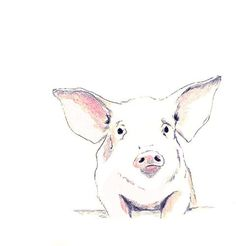 Pig Art Print  Some Pig by corelladesign on Etsy