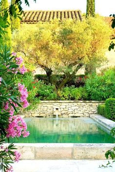 #mediterranean #outdoor #decor #garden #flowers #plants #vegetation  More similar plicture on the website. Click to see! Thank you!