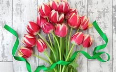 Scarica sfondi fiori rossi, 8 marzo, tulipani, tulipani rossi, bouquet tulip